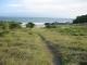 beachtrail